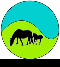 D A Murray logo
