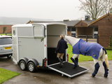 HB511 Horse trailer for hire