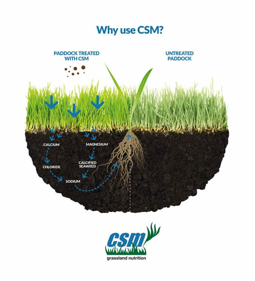 Why use CSM diagram?
